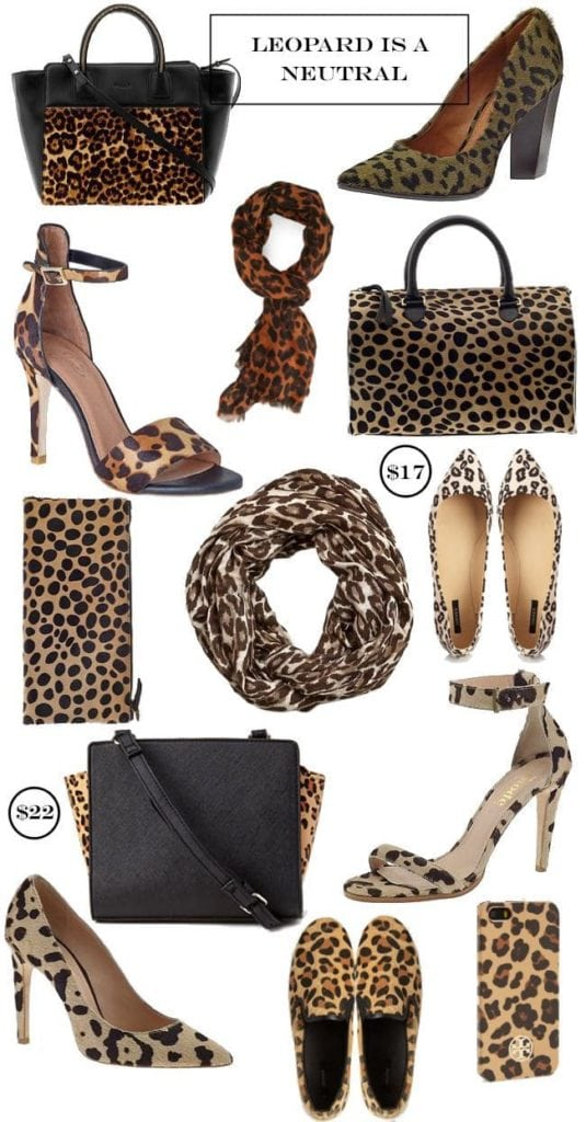 leopard accessories graphic